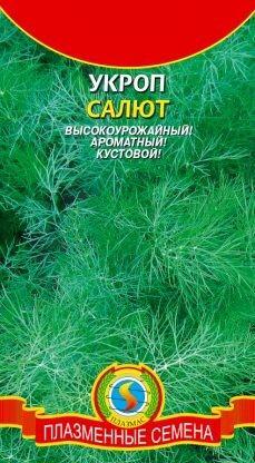 Укроп Салют ЦВ/П (ПЛАЗМА) позднеспелый кустовой