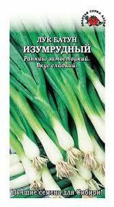 ЛУК Батун Изумрудный ЦВ/П (СОТКА) раннеспелый
