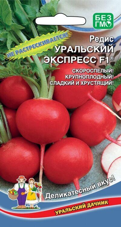 Редис Уральский экспресс®F1 (УД) (Выровненные, плотные, массой 25-30 г, очень сочные, нежного деликатесного вкуса, не растрескиваются.)
