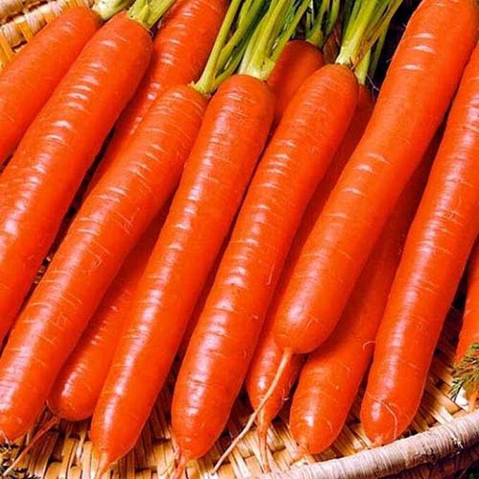 """Семена Морковь """"Витаминная 6"""""""