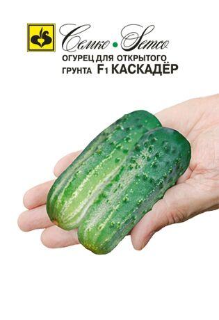 Огурец Каскадер F1  1 г