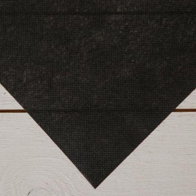Геотекстиль термоскреплённый, 1,6 ? 5 м, плотность 80 г/м?, чёрный