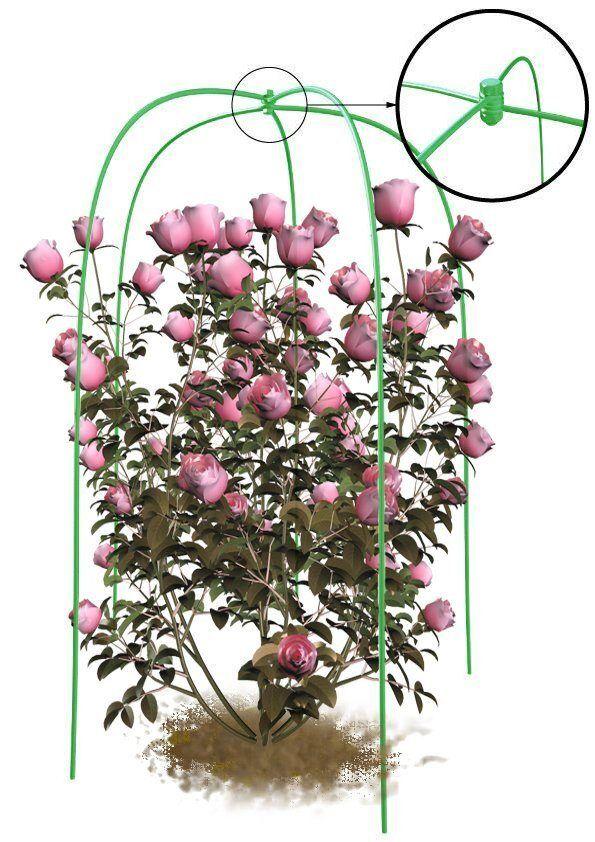 Укрытие+опора для роз зеленая «Огород Будущего»