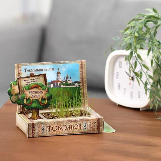 Растущая травка в открытке «Тобольск»