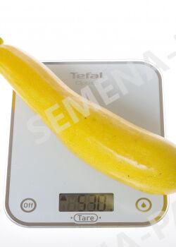 Семена Кабачок желтоплодный Ясмин F1 5 шт.