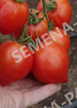 Семена Томат Диадема F1 20 шт